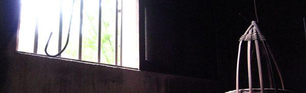 林盧。台所の窓から差し込む光